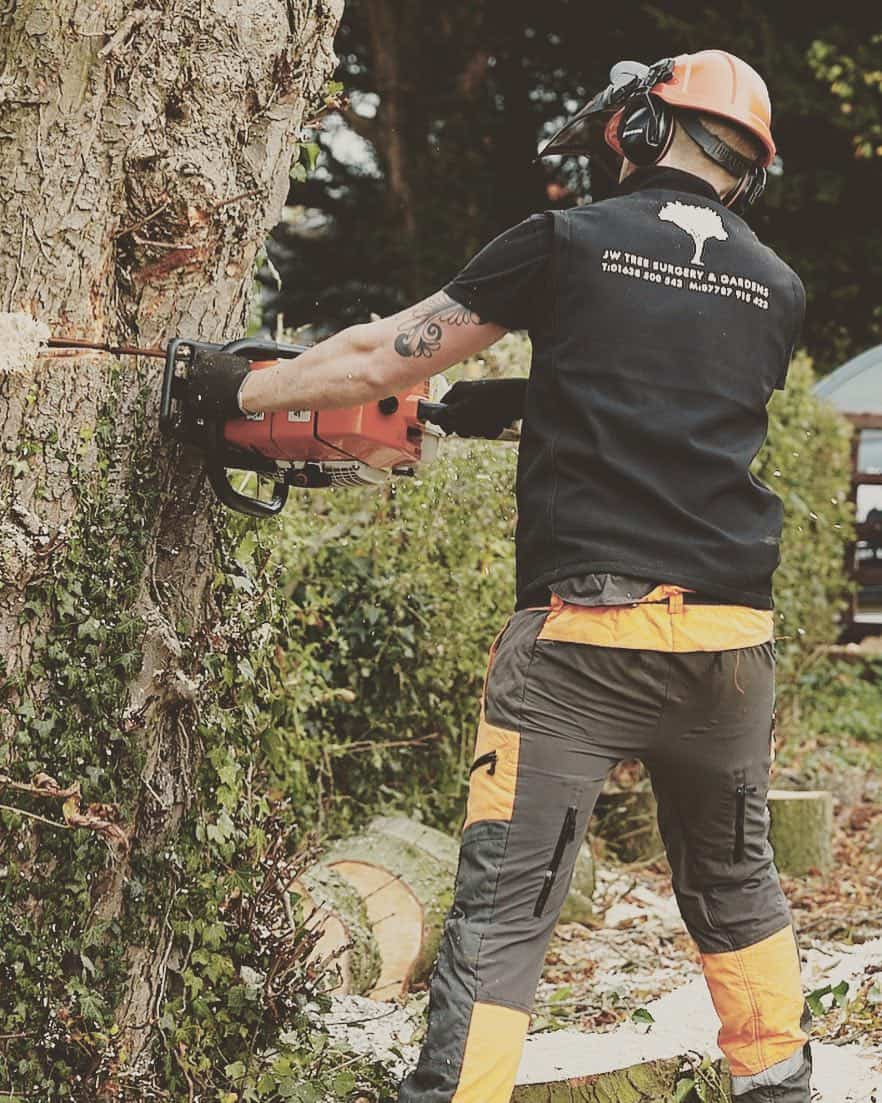 chainsawing tree Haverhill